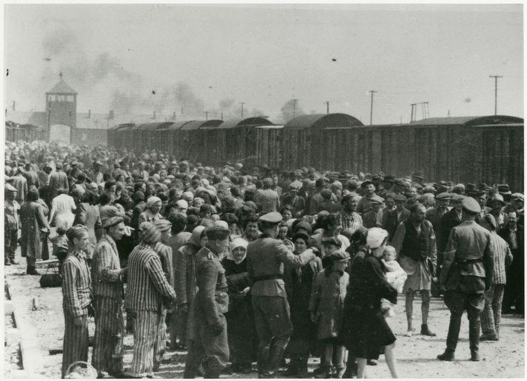 Auschwitz, zomer 1944. De tweede man van links in het gestreepte pak van een gevangene is door zijn zoon Shai herkend als Maurice Schellekes. Beeld Beeld United States Holocaust Memorial Museum/Yad Vashem