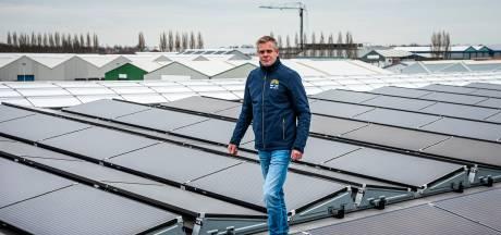 Zonne-energie groeit als kool, maar regio Boskoop moet nog even geduld oefenen