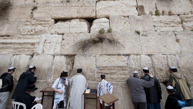 Gelovigen bezoeken de klaagmuur van de Joodse Tempel die op de Tempelberg in de oude stad Jeruzalem is gebouwd. Beeld anp
