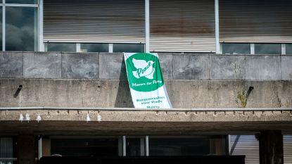 Vredesvlag wappert aan gemeentehuis