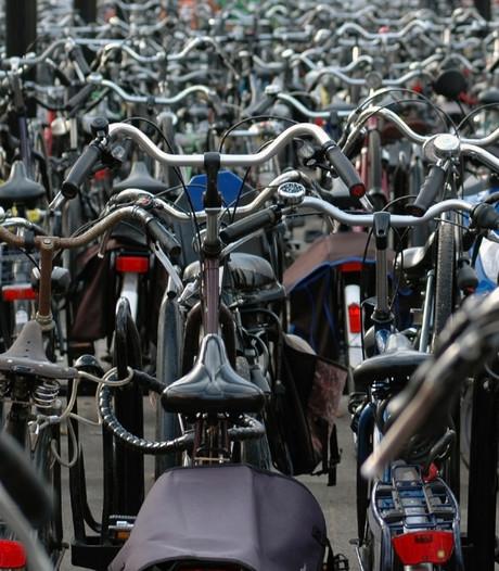 Nieuwlandse geeft fiets aan 11-jarig meisje na oproep politie