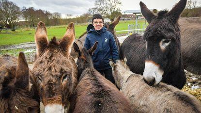 """'Marathonprofessor' Johan Swinnen steunt 'Donkey Campus': """"Ezels helen jongeren met kanker"""""""