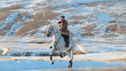Noord-Korea importeert 70.000 euro aan rasechte Russische paarden