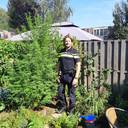 Wietplanten in de Arnhemse wijk De Laar.