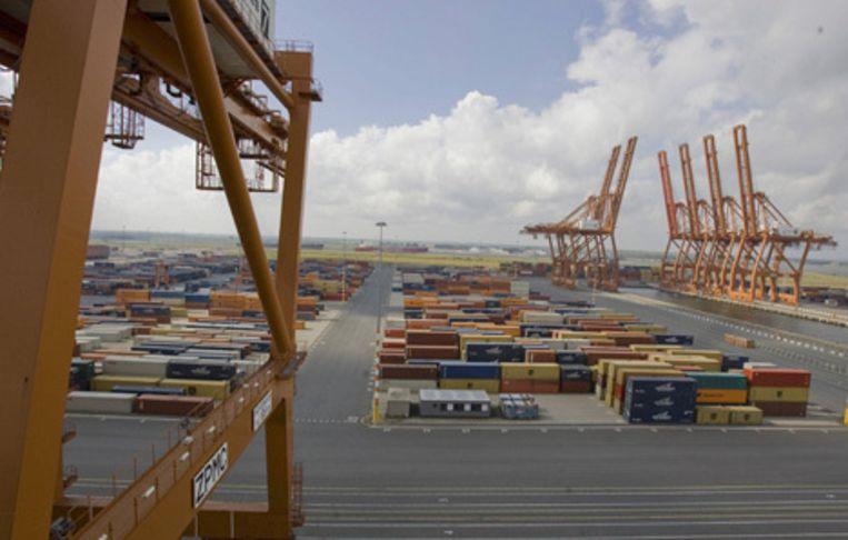 Bij Amsterdam Container Terminals (ACT) werken 240 mensen, waarvan circa 200 bij de voormalige Ceresterminal aan de Amerikahaven. Foto Amaury Miller Beeld