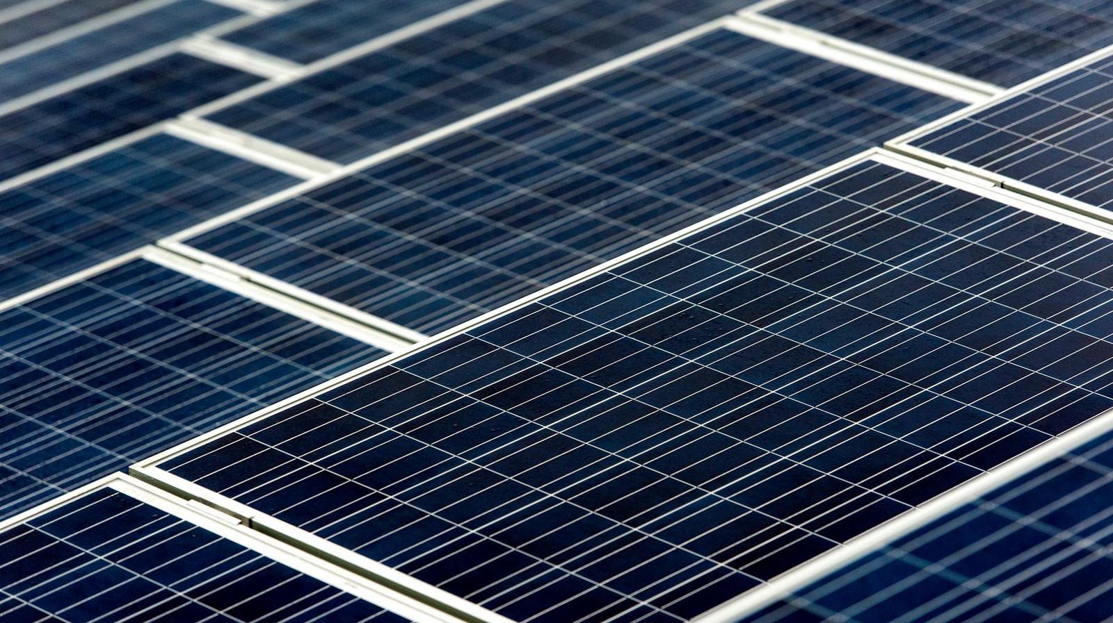 Op het Arnhemse stadhuis is ruimte voor 700 zonnepanelen.