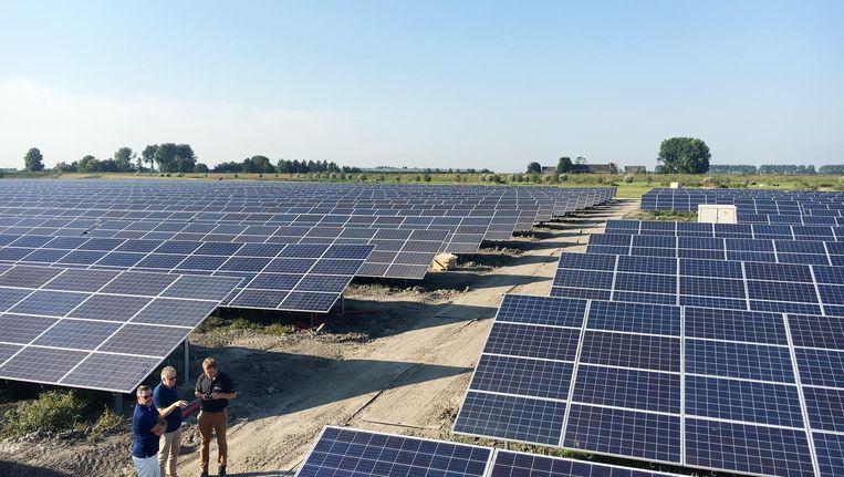 De zonneweide op bedrijventerrein Baanstee-Noord in Purmerend, met 22.000 inwoners de grootste in stedelijk gebied van de Benelux Beeld solar campus