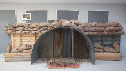 Leerlingen herdenken 100 jaar wapenstilstand met 600 poppies