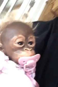 Henny Huisman lacht om 'afzeikreacties' na adoptie 'babyaap'