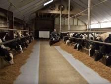 Dit vindt boer uit Enschede van mogelijk onttrekkingsverbod water