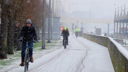 Antwerpenaar meest fietsactieve werknemer