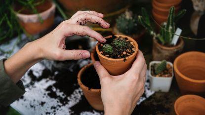 Waarom tuinieren niet alleen voor 'oude mensen' is
