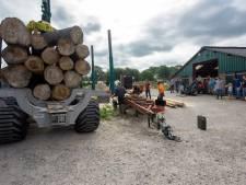 Zagen in Best voor beter imago populierenhout