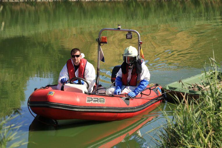 Een ploeg van de brandweer ging het water in om de dode vissen op het droge te brengen.
