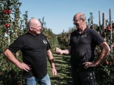 Een ratjetoe aan appels uit Liemerse boomgaard zorgt voor heerlijke appelcider