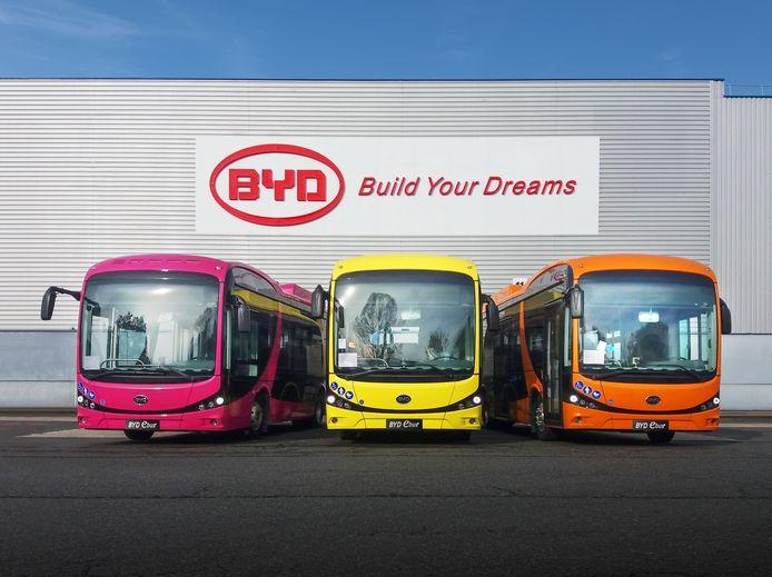 Elektrische bussen van het Chinese BYD. In Overijssel, Gelderland en Lelystad gaan er als alles doorgaat zo'n 300 rijden voor busvervoerder Keolis. Rond de aanbesteding ontstond veel rumoer omdat een Nederlandse leverancier daarmee buiten de boot viel.