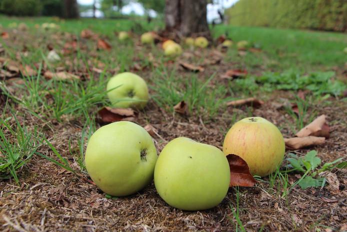 Ed. Achterhoek ivm kortje over sappers-actie voor eigenaars van fruitbomen enz.. Voor bij kortje.