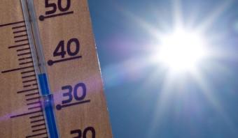 2016 vestigde, als verwacht, een mondiaal warmterecord