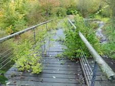 Negen plannen voor voormalige Euregiotuinen in Oostburg