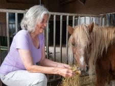 Noodkreet van stichting 't Olde Manegepeerd in Dalmsholte: 'Deze paarden mogen nooit vergeten worden'