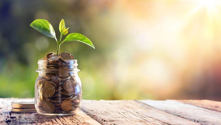 Wie zijn spaargeld wil laten groeien,moet creatief zijn.