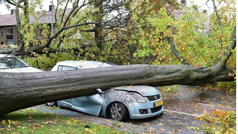 Schade in Tilburg na de westerstorm van afgelopen woensdag. Beeld anp