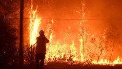 Brandhaarden komen samen en vormen megabrand nabij Sydney