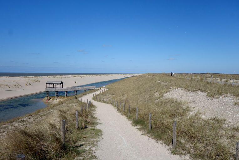 De ontwikkeling van de natuur in de nieuwe duinen heeft tijd nodig.  Beeld Joop Bouma
