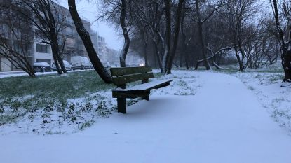 Het sneeuwt! Mensen delen massaal beelden van eerste sneeuwvlokken op sociale media
