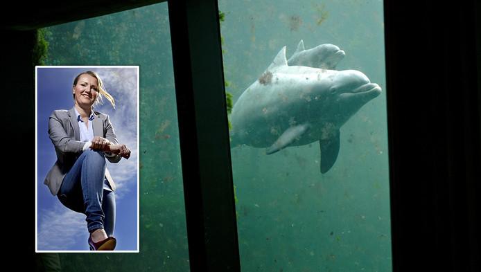 Leonie Vestering (inzetje) wil dolfijnenshows de wereld uit hebben.