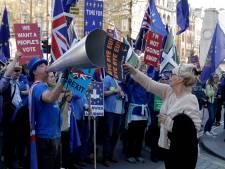 'Eindelijk brexit, ik ga feesten in de pub en krijg dan vast ruzie met een remainer'