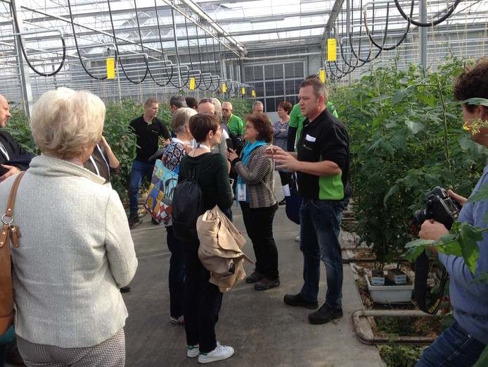 Tomatenkweker René Tielemans ontvangt de bezoekers in zijn kassen.