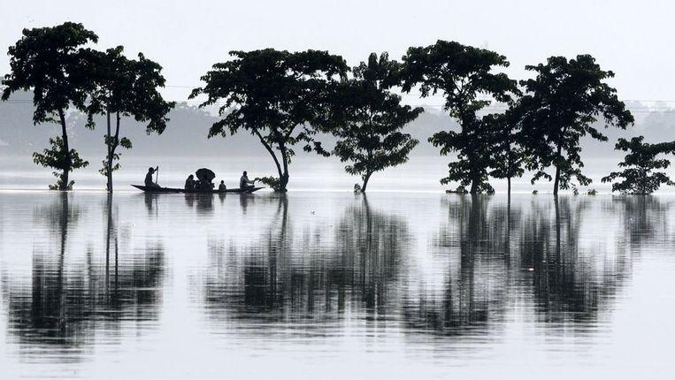 Overstroomd gebied in Assam. Beeld afp