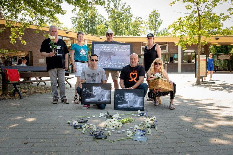 De actievoerders hebben foto's van leeuwin Rani mee.