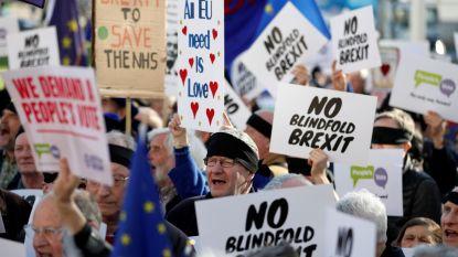 Het grote Brexicon: populaire brexit-termen uitgelegd