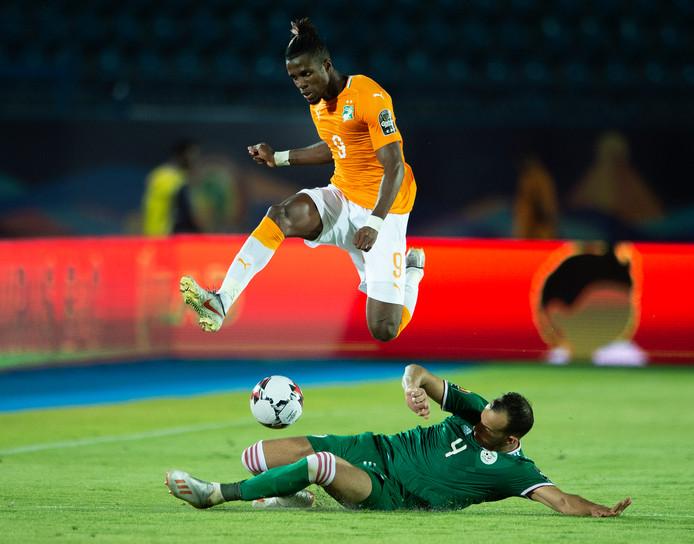 Wilfried Zaha in actie namens Ivoorkust op de Afrika Cup in Egypte.