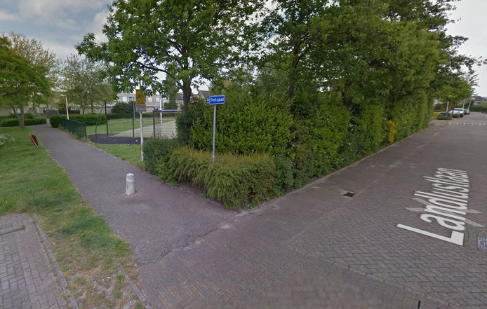 De Landlustlaan in Leidschendam. Foto ter illustratie.