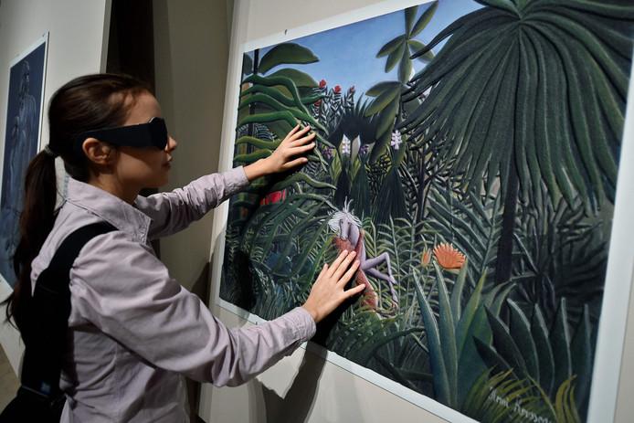 Blinde museumbezoekers kunnen binnenkort wellicht door een app het Voerman Museum in Hattem bezoeken.