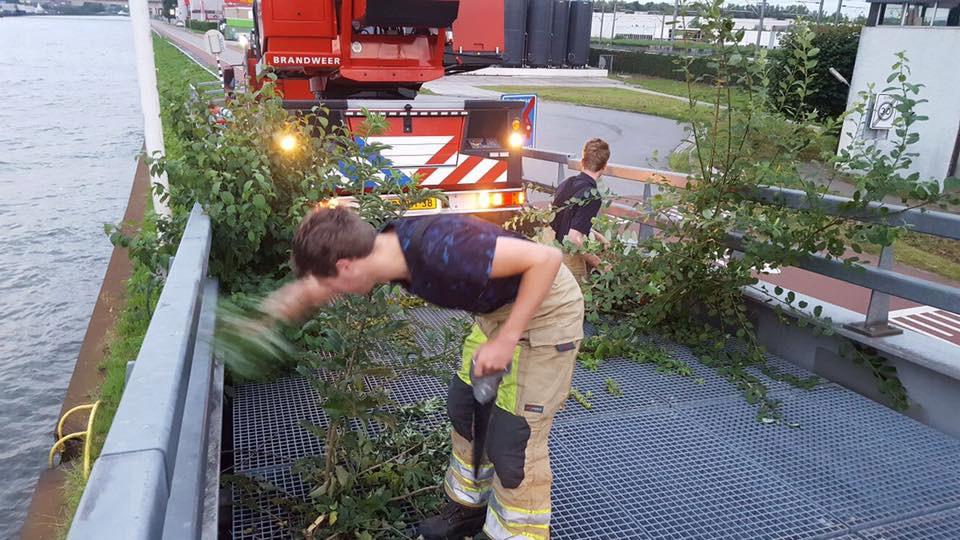 Brandweer moet onkruid weghalen op de calamiteitenafrit bij de Maarsserbrug in Maarssen.