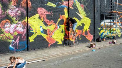 Graffitikunstenaars uit de hele wereld in Minckelersstraat