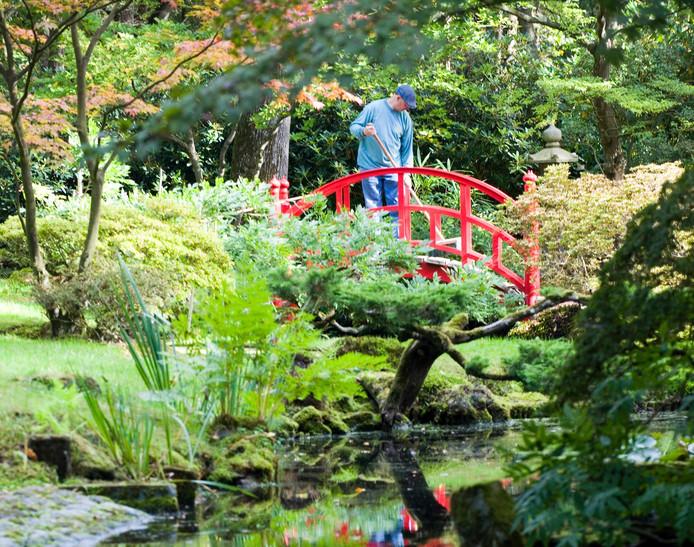 Archiefbeeld ter illustratie: De Japanse Tuin op Landgoed Clingendael