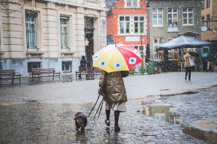 De hond lijkt er zich weinig van aan te trekken, van de dwarrelende sneeuw.