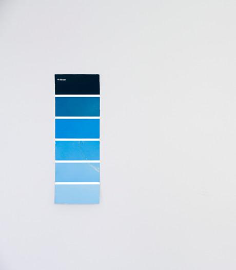 Pantone dévoile la couleur de l'année 2020