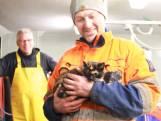 Poes Katrien terug van week op Noordzee