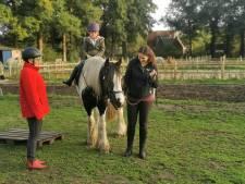 Paardencoaching in Wageningen voor kinderen met een rugzakje