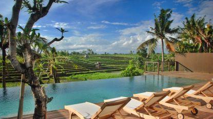 Dieter en Bart bouwden op Bali hun droomvilla met zicht op een uitgedoofde vulkaan