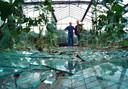 Het noodweer sloeg vorig jaar hard toe in Brabant. Iedereen herinnert zich de beelden van honderden vierkante meters kassen aan diggelen door hagel en storm. In zo'n geval zeggen beelden meer dan woorden.