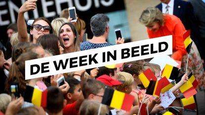 De Week in Beeld - 26 mei 2018