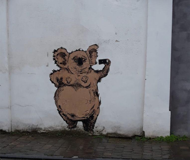 Een koala in de Simon de Mirabellostraat