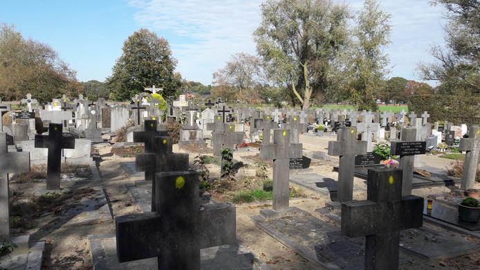 Het kerkhof in Biest-Houtakker. De met een gele stip gemarkeerde graven worden geruimd. Dat is naar schatting ruim een derde van alle graven.